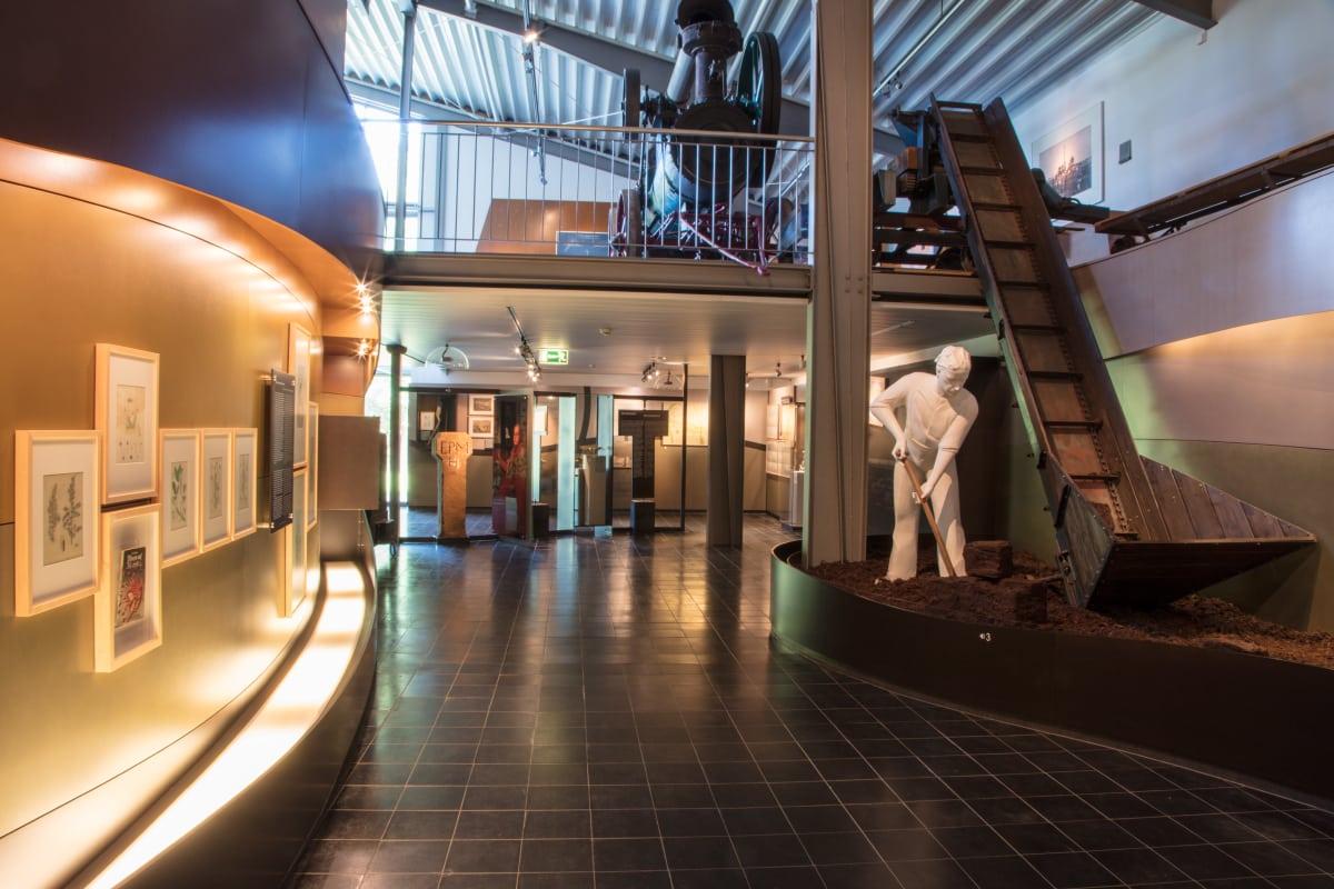 Gut Landegge Umgebung Moormuseum Geeste