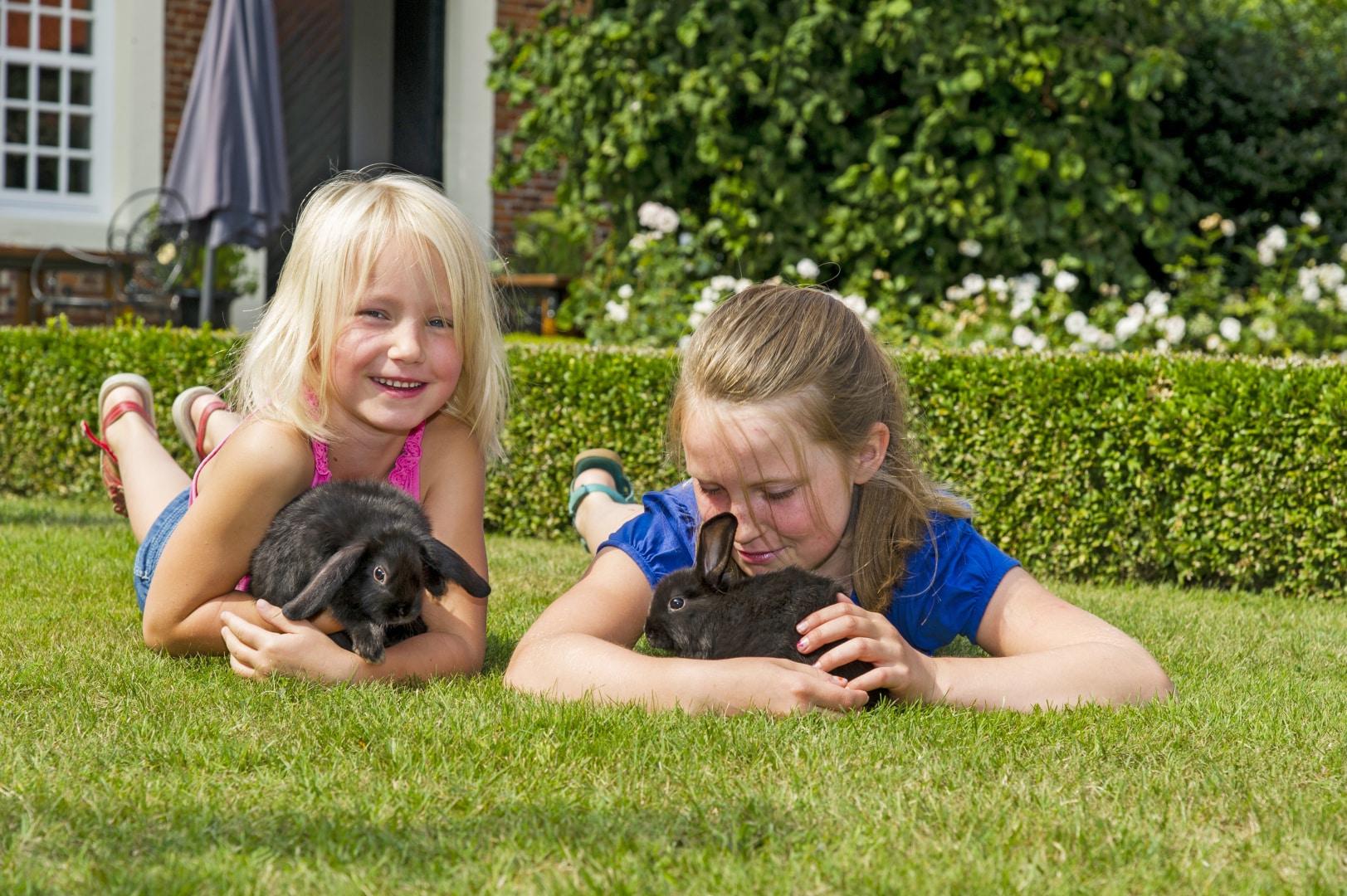 Familotel Gut Landegge Familienurlaub im Emsland Alles für Kids und Teens Kleintierbereich Streichelzoo Kaninchen